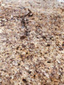 granit-colonial-brown-interior-3